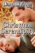 Christmas Serendipity