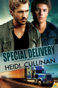 Review: Special Delivery by Heidi Cullinan