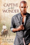 Captive To His Wonder by Remmy Duchene