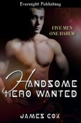 Handsome Hero Wanted