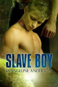 Slave Boy by Evangeline Anderson