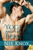 yogi and the bear