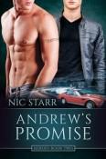 Andrew's Promise (Heroes 2)