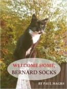 Review: Welcome Home, Bernard Socks by Paul Magrs