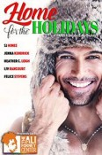 Review: Home for the Holidays Anthology