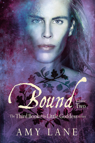 Review: Bound, Volume 2 by Amy Lane