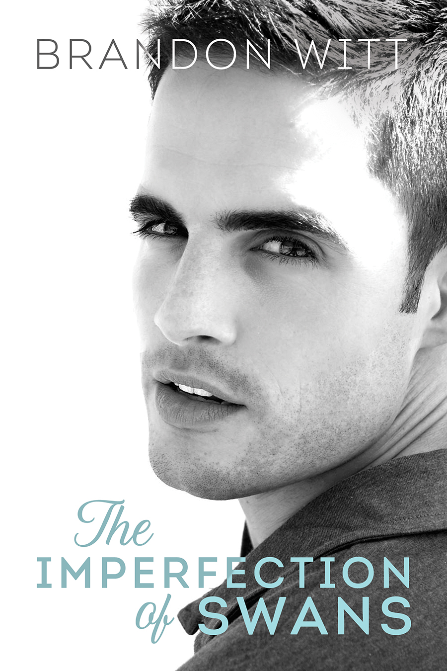 Guest Post and Giveaway: The Imperfection of Swans by Brandon Witt