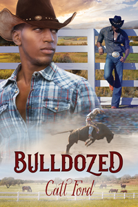 Review: Bulldozed by Catt Ford