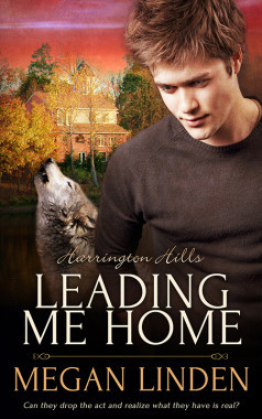 Review: Leading Me Home by Megan Linden