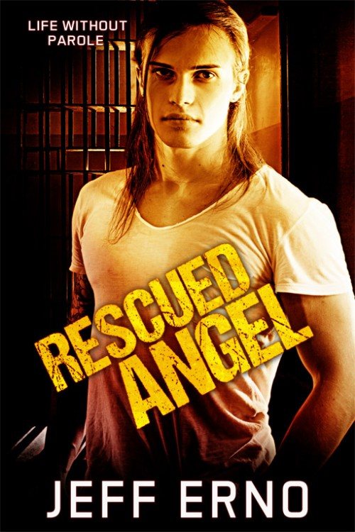 Review: Rescued Angel by Jeff Erno