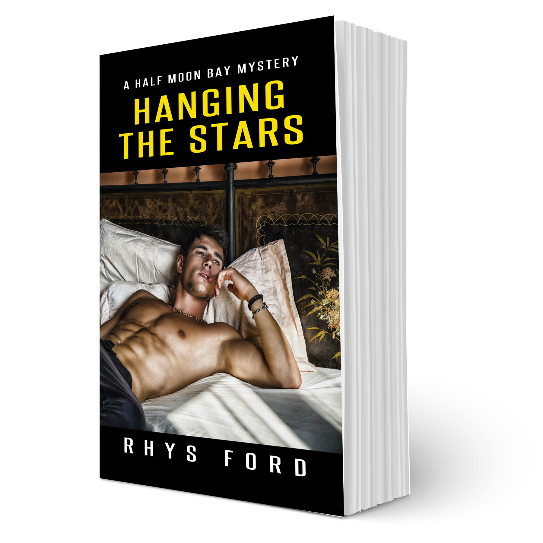 Guest Post and Giveaway: Hanging the Stars by Rhys Ford