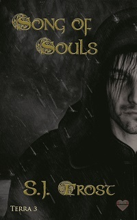 Review: Song of Souls by S.J. Frost
