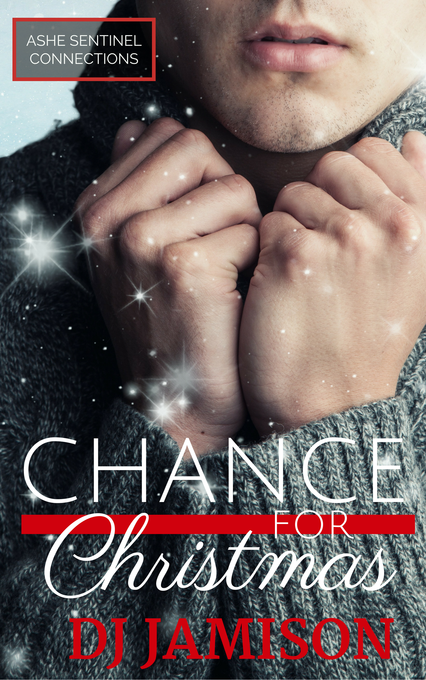 Guest Post and Giveaway: Chance For Christmas by DJ Jamison