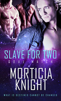 Review: A Slave for Two by Morticia Knight