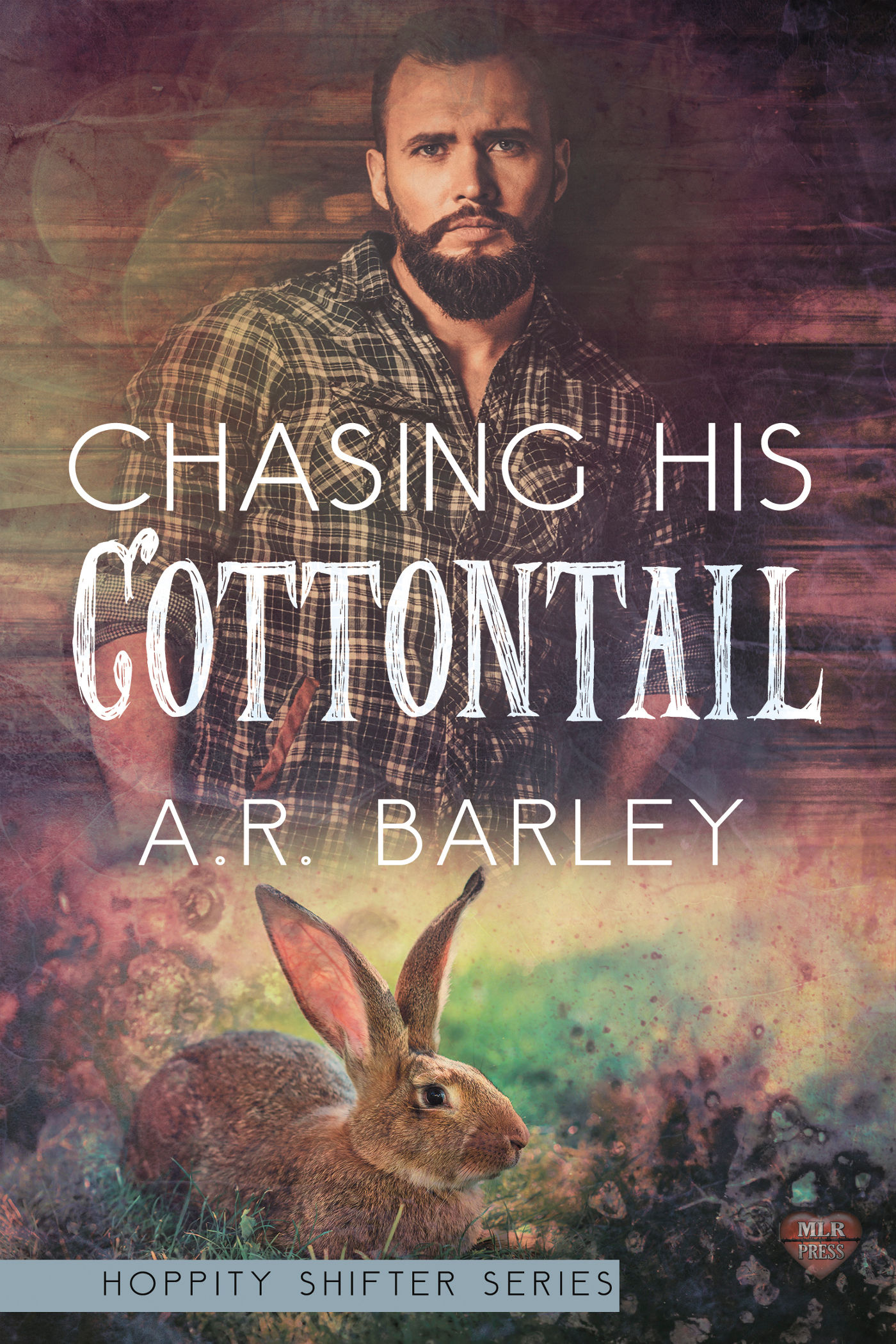 Review: Chasing His Cottontail by A.R. Barley