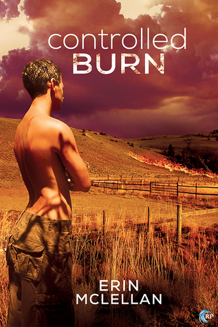 Review: Controlled Burn by Erin McLellan