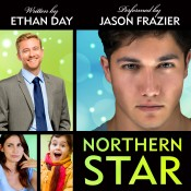 Northern Star Audiobook cover