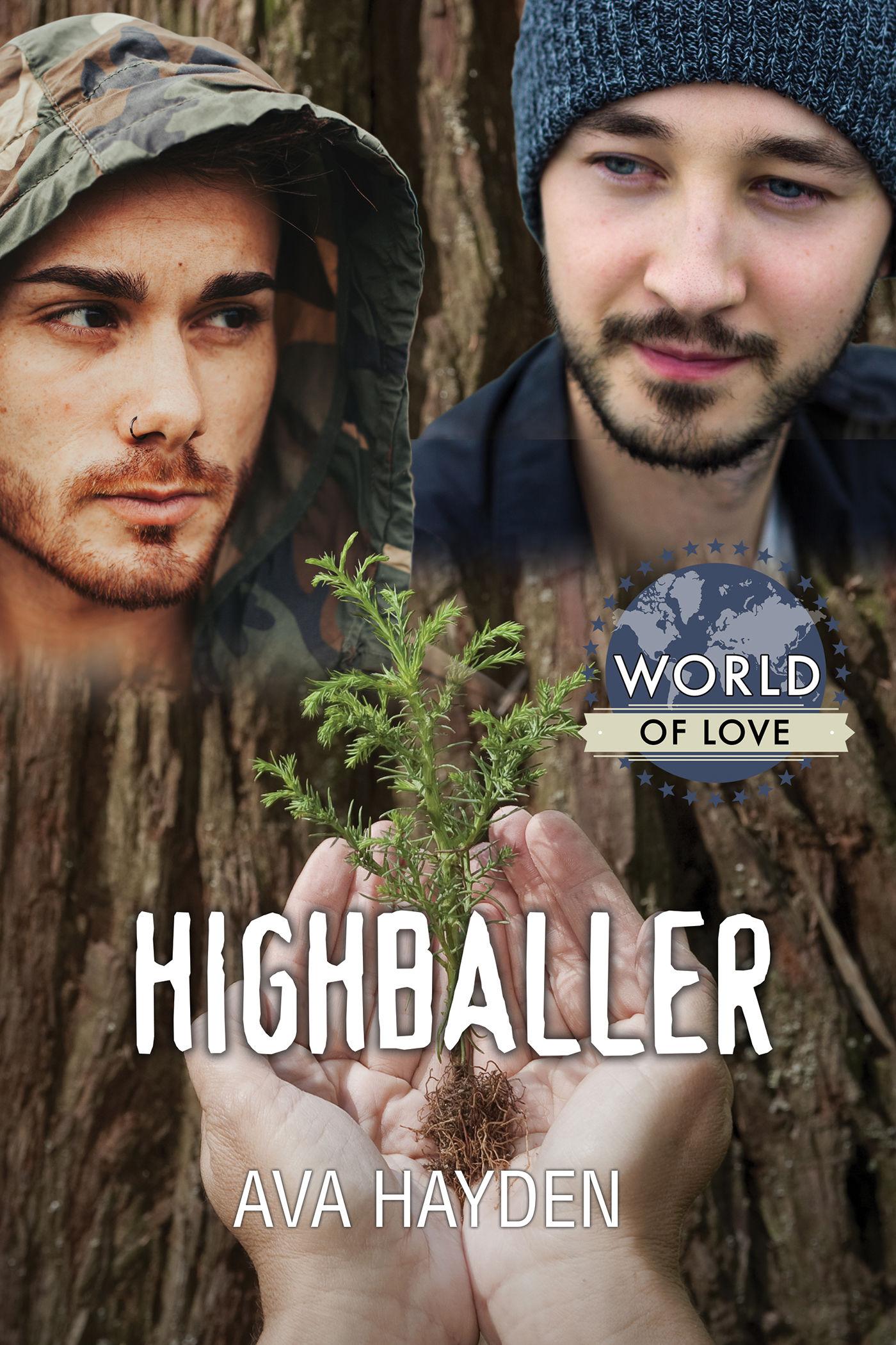 Review: Highballer by Ava Hayden