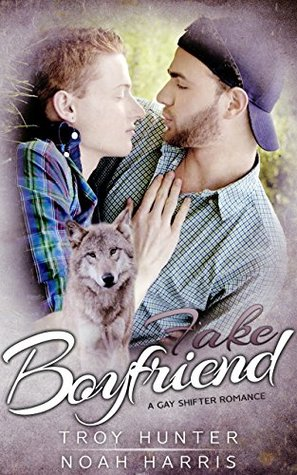 Review: Fake Boyfriend by Troy Hunter and Noah Harris