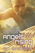 Review: Angels Rising by C.C. Bridges