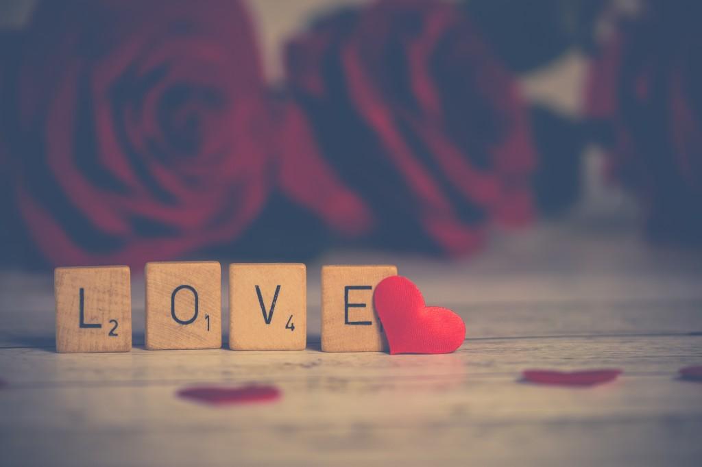 Lover Teaser image