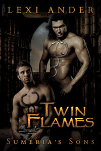 Review: Twin Flames by Lexi Ander