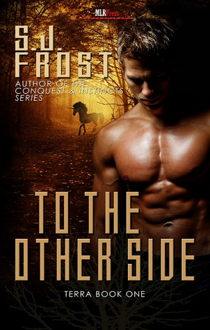 Review: To the Other Side by S.J. Frost