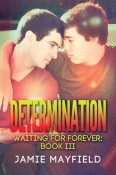 Review: Determination by Jamie Mayfield