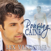 Giveaway: Audiobooks from Lex Valentine!