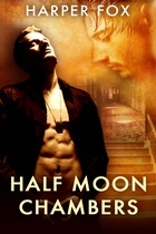 Review: Half Moon Chambers by Harper Fox