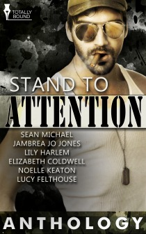 Review: Stand to Attention Anthology