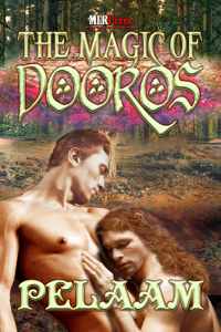 Review: The Magic of Dooros by Pelaam