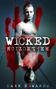 Review: Wicked Reflection by Hank Edwards