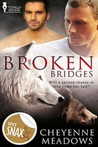 Review: Broken Bridges by Cheyenne Meadows
