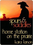 Home Station on the Prairie