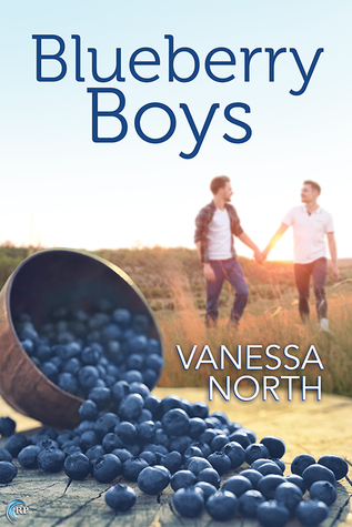 Review: Blueberry Boys by Vanessa North