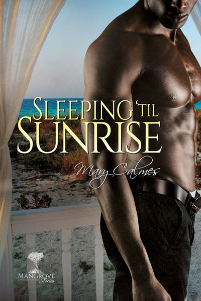 Guest Post and Excerpt: Mangrove Stories by Mary Calmes