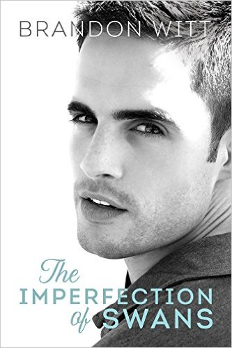 Review: The Imperfection of Swans by Brandon Witt