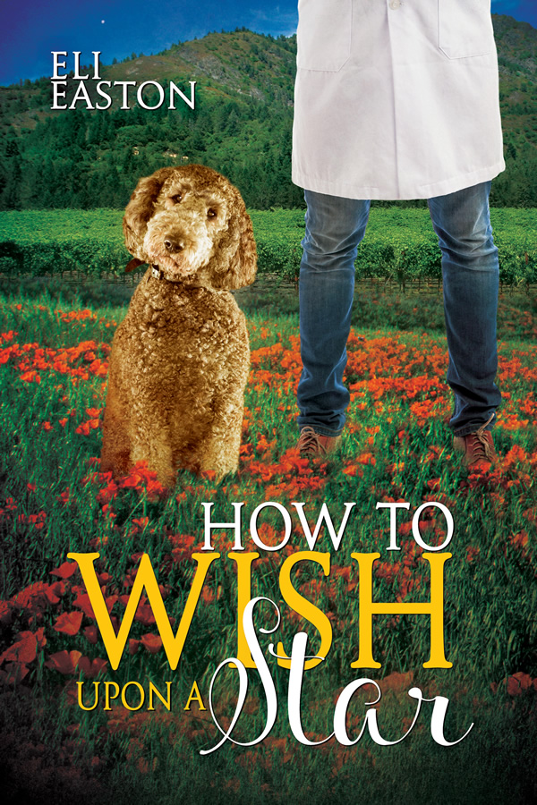 Excerpt and Giveaway: How to Wish Upon a Star by Eli Easton