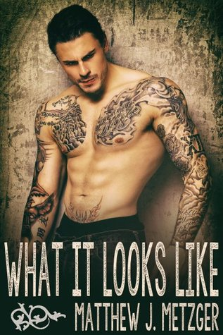 Review: What It Looks Like by Matthew J. Metzger