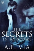 Guest Post and Giveaway: The Secrets in My Scowl by A.E. Via