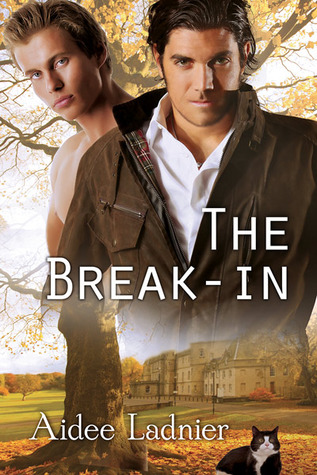Review: The Break-In by Aidee Ladnier