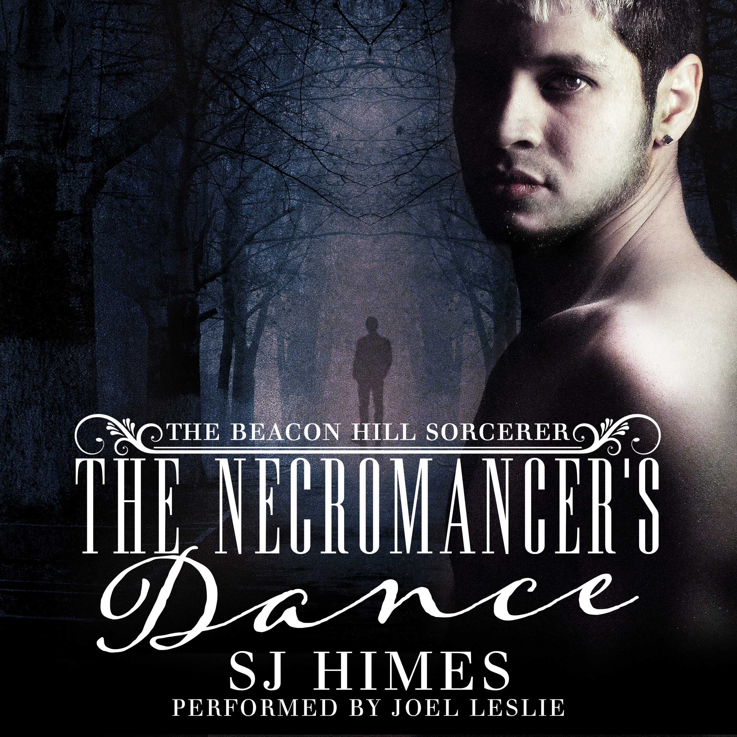 Guest Post and Giveaway: The Necromancer's Dance Audiobook by S.J. Himes (narrated by Joel Leslie)