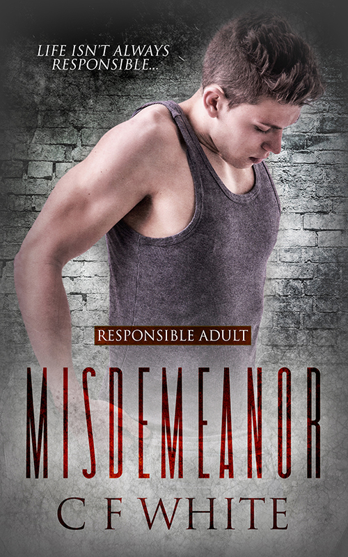 Guest Post and Giveaway: Misdemeanor by CF White
