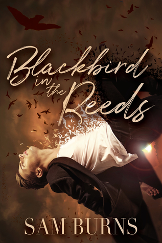 Review: Blackbird in the Reeds by Sam Burns