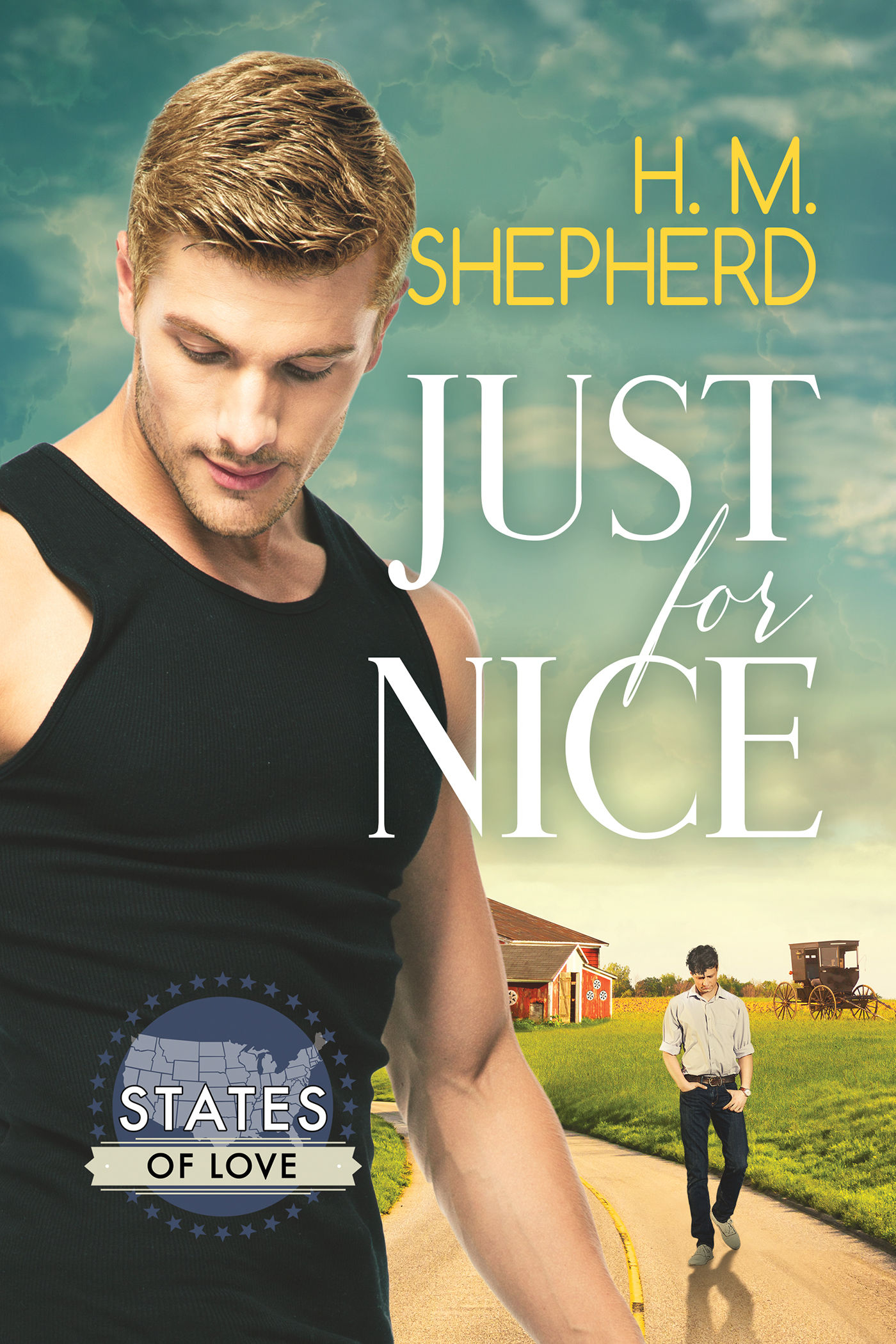 Review: Just For Nice by H.M. Shepherd
