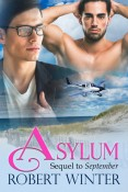 Guest Post and Giveaway: Asylum by Robert Winter