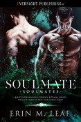 Review: Soulmate by Erin M. Leaf