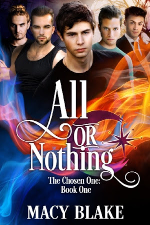 Review: All or Nothing by Macy Blake