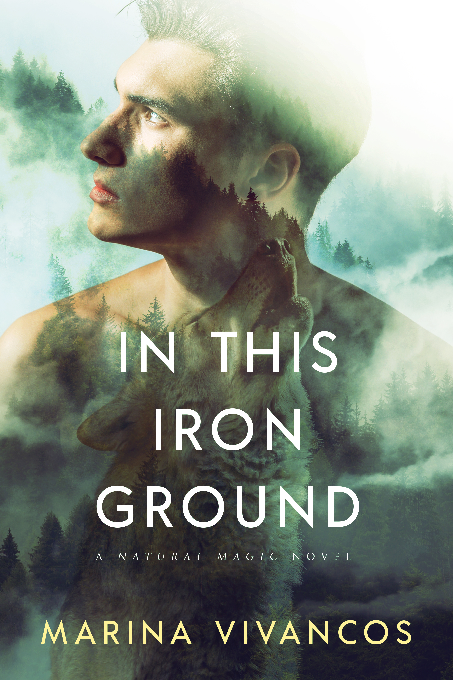 Review: In This Iron Ground by Marina Vivancos